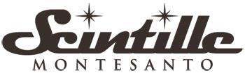 Gioielleria Scintille Montesanto - Rivenditore Damiani
